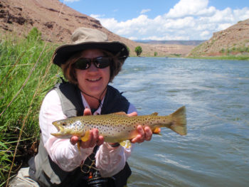 Blog gunnison river expeditions for Gunnison river fly fishing