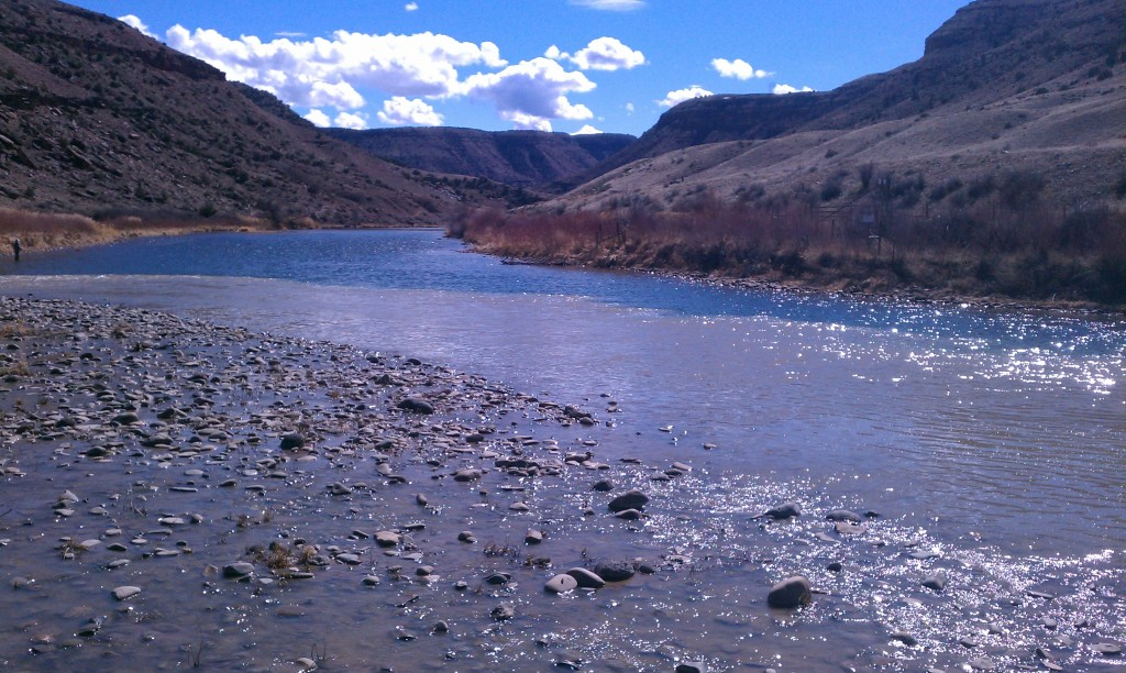 Fishing report 3 3 14 gunnison river expeditions for Gunnison river fishing
