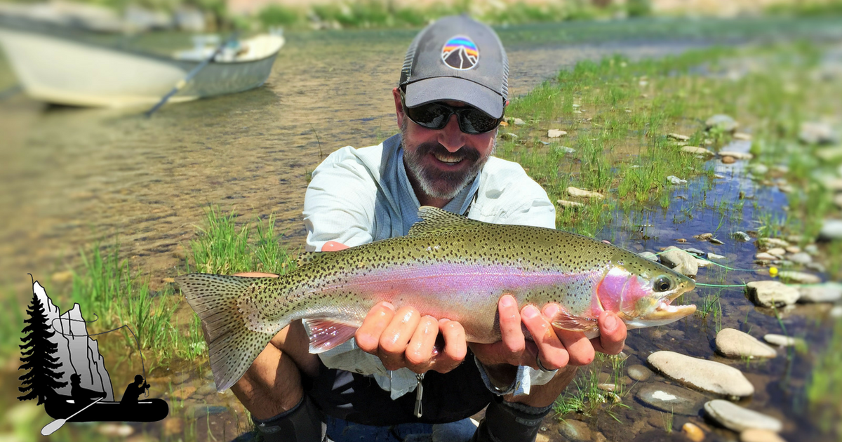 Gunnison river expeditions guided fly fishing trips in for Colorado fishing trips